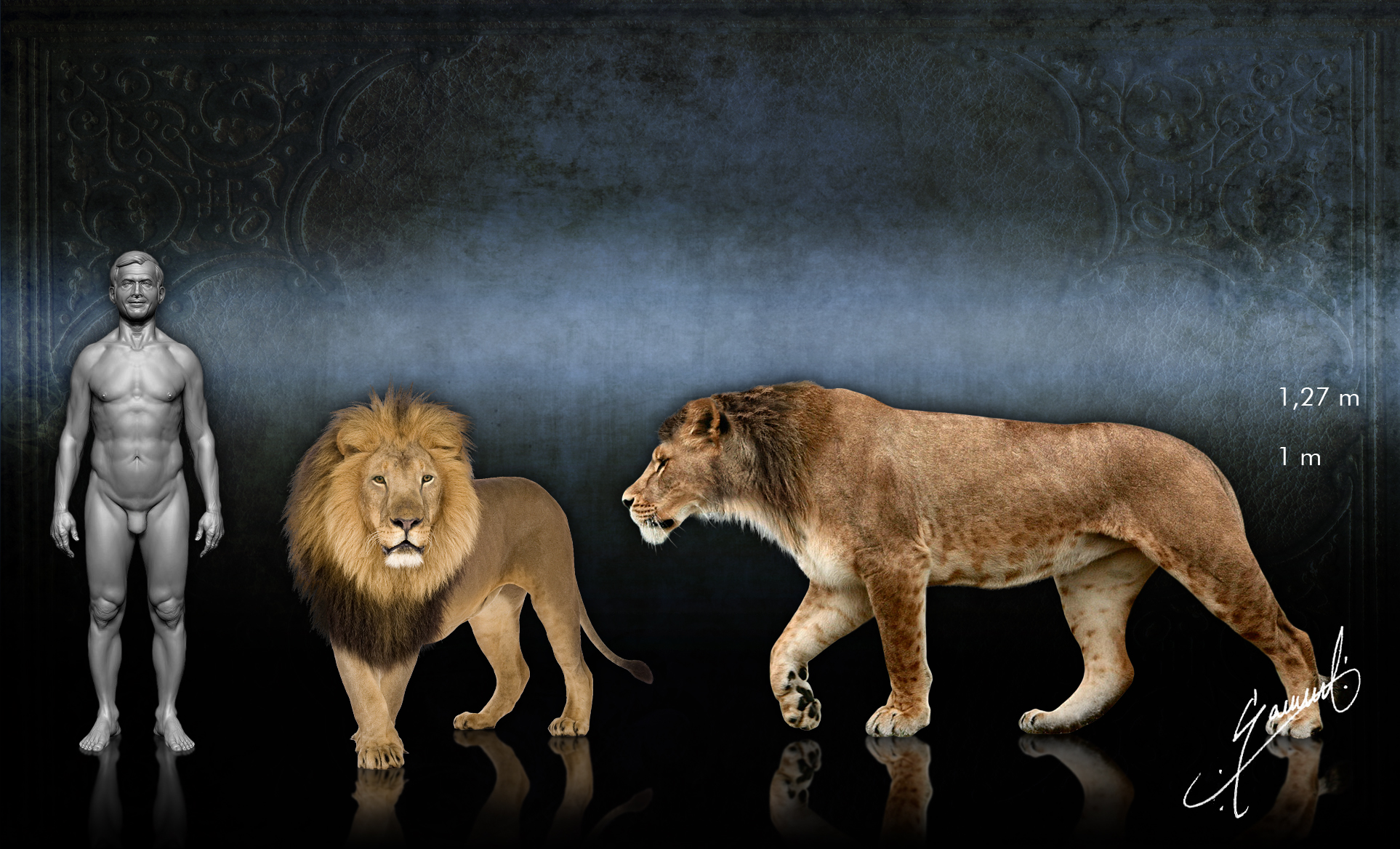 The Bigger They Are 10 Ice Age Giants  Mental Floss