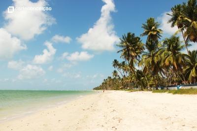 Praia de Carneiros | Tamandaré
