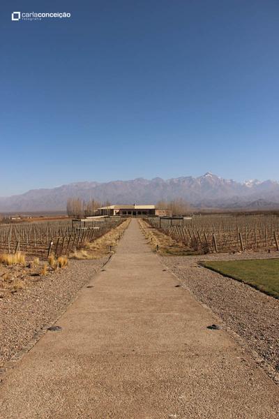 Bodega Salentein | Mendoza
